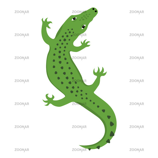 Reptile Lizard or Alligator crocodile top view, wild animal vector isolated