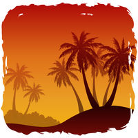 Exotic Landscape with Palm