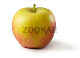 Apfel Elstar Freisteller