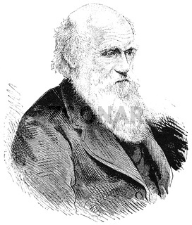 Portrait of Charles Robert Darwin - an English naturalist