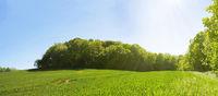 Frühsommerliche Sonne über weiter Landschaft, Panorama