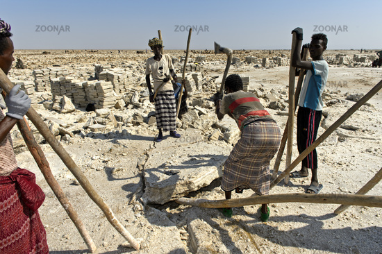 Afar salt workers breaking salt blocks from the salt crust of Lake Assale, Ethiopia