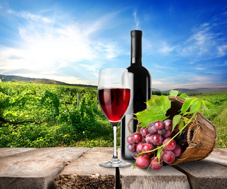 Red wine and vineyard