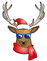 cool stag (Christmas edition)