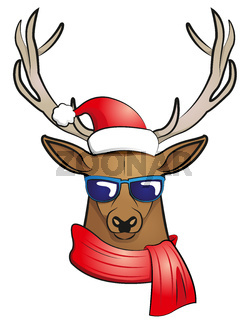 cool stag (Weihnachtsedition)