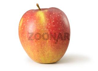 Apfel Wellant freigestellt