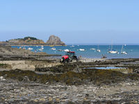 oyster farming in cancale, brittany