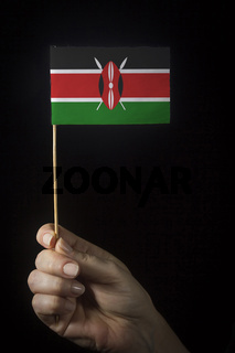 Hand with flag of Kenya