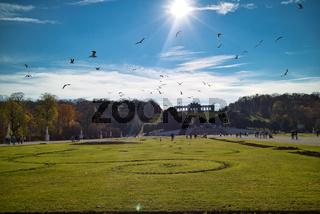 Beautiful landscape before Schonbrunn Palace in Vienna.