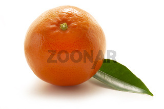 Mandarin with leaf isolated