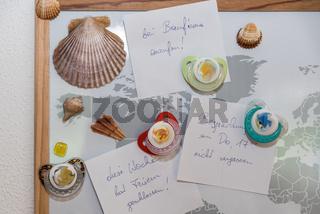 lustige Pinnwand mit magnetischen Muscheln und Schnullern