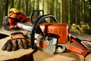 Holzarbeit.jpg