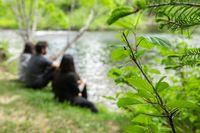 Fresh plants near lake with people sitting