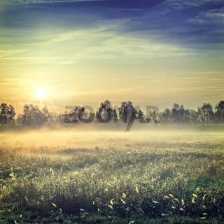 sunrise over the Vehnemoor