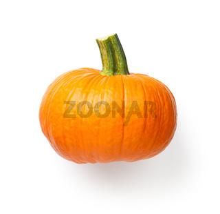 Fresh Pumpkin Vegetable Isolated Over White Background