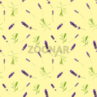 seamless pattern made from lavendel flowers isolated on yellow. fresh blossoms. floral pattern.