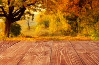Wooden boards or desktop against blurred autumn forest landscape on background. Use as mockup for display or montage of your products. Close up