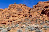 Beautiful Rock Formations In The American Southwest