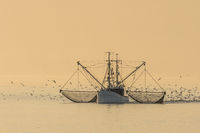Fishing trawler with fishing nets, Buesum, North Sea, Schleswig-Holstein, Germany