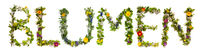 Flower And Blossom Letter Building Word Blumen Means Flowers