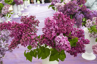 Beautiful bouquet of lilac