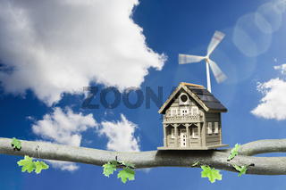 Bird Box on a branch powered by green energy