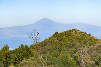 On La Gomera - View over the Garajonay National Park in direction Tenerife