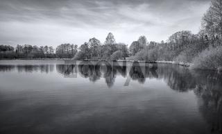 Teichlandschaft im Maerz