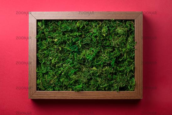 Wooden Frame With Green Moss