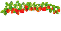 Strawberries in a row - vector illustration