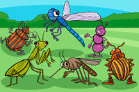 insects and bugs funny cartoon characters group
