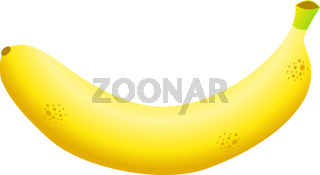 Banana. Healthy eating. Exotic tropical fruit. Vector illustration isolated on white.