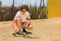 Young dutch man feeding iguana on ground
