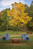 The seesaw before the autumn tree