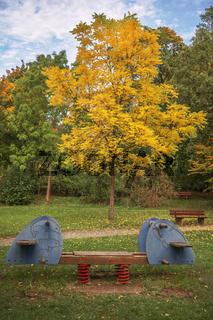 Die Wippe vor dem Herbstbaum
