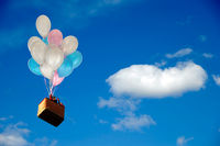 Balloons and basket