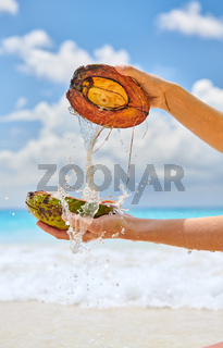 Woman splashing water with coconut on beach