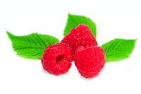 Ripe Raspberries fruits