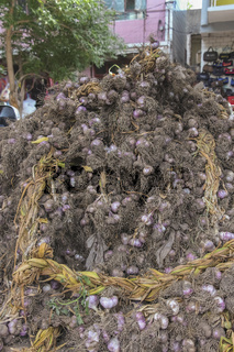 A mountain of harvested garlic sold at a roadside