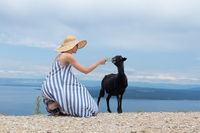 Young attractive female traveler wearing striped summer dress and straw hat squatting, feeding and petting black sheep while traveling Adriatic coast of Croatia