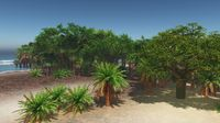 Palms on the tropical beach 3d rendering