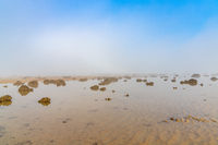 A landscape of fog lifting over an endless wadden sea beach at low tide