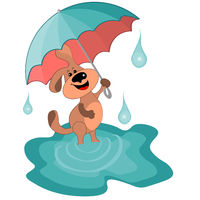 Vector illustration on a white background - a joyful dog with an umbrella one walks in puddles.