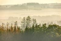 Autumn foggy and misty sunrise landscape