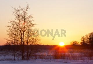 Sonnenuntergang im Naturschutzgebiet Duvenstedter Brook, Hamburg, Deutschland
