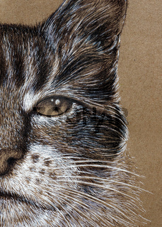 Cat's face painting with white and black ink on kraft paper