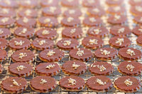 Brown Christmas cookies lie on a plate as a background