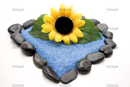 Sunflower with blue sand