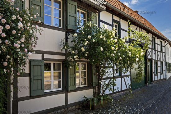 Half-timbered facade with roses, Liedberg, Korschenbroich, Lower Rhine, Germany, Europe