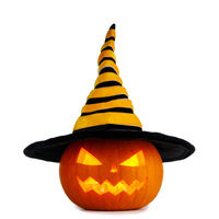 Halloween pumpkin in witches hat